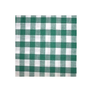 Tissu vichy vert moyens VCM03