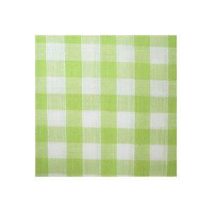 Tissu vichy vert moyens VCM07